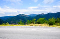 Sunny road Royalty Free Stock Photo