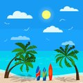 Sunny seascape with palms, blue ocean, sand coastline, different surfboards, clouds, sun, seagulls, sky, Vector background