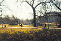 Sunny spring morning in Central Park Riga