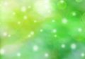 Sunny summer bokeh background green Stock Image