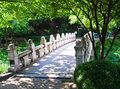 Sunny white stone bridge under green trees Stock Photography