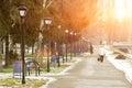 Sunny Winter City Park Landscape