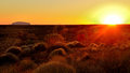 Sunrise of ayers rock a scene uluru australia Royalty Free Stock Images