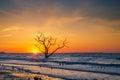 Sunrise at Botany Bay Beach