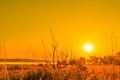 Sunrise in a countryside scenery Royalty Free Stock Photo