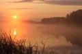 Sunrise foggy lake at lake skoki poland Royalty Free Stock Photo