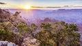 Sunrise at the Grand Canyon Royalty Free Stock Photo