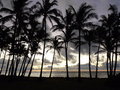 Sunrise in kauai a with palm trees the foreground Royalty Free Stock Images