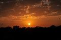 Sunrise at Kruger National Park Royalty Free Stock Photo