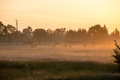 Sunrise in misty country meadow Royalty Free Stock Photo