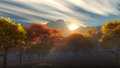 Sunrise over the autumn yellow and red trees Royalty Free Stock Photo