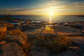 Sunrise over a bench at a nordic coast åland finland Royalty Free Stock Photos