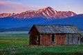 Sunrise Over Colorado's Tallest Peak and Old Barn. Royalty Free Stock Photo