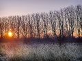 Sunrise over a Frosty River Bank Royalty Free Stock Photo