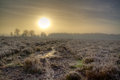 Sunrise over heath sun rising a path on a frozen and misty Stock Photography