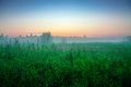 Sunrise over the high green grass. The Tver country. Sunny summer morning, July. Beautiful landscape. Agricultural landscape in th Royalty Free Stock Photo