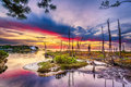 Sunrise over shalimar fl beautiful colorful calm waters in the florida panhandle with barren trees in the foreground courtesy of Royalty Free Stock Image