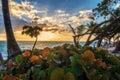 Sunrise in Punta Cana Royalty Free Stock Photo