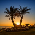 Sunrise on the Red sea, Marsa Alam, Egypt Stock Photo