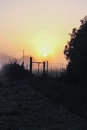 Sunrise seen behind the fence Royalty Free Stock Photo