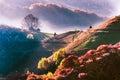 Sunrise in transylvania roamania a beautifull romania near alba iulia county Royalty Free Stock Photo