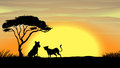 Sunset in africa Stock Image