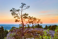 Sunset in bavaria in the mountains of franconian jura with trees and rocks a warm green color trekking trail frankenweg Royalty Free Stock Photography