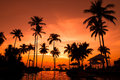 Sunset on the beach beautiful tropical Royalty Free Stock Photography
