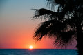 Sunset beach evening sea palm trees trave Royalty Free Stock Image