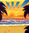 Sunset on beach with palms Royalty Free Stock Photo