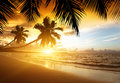 Sunset on the beach of sea caribbean Royalty Free Stock Photography