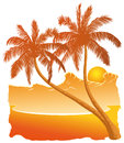 Sunset on the beach silhouettes of palm trees with a Royalty Free Stock Photo