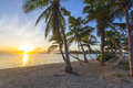 Sunset on beach tropical paradise at with hammock Royalty Free Stock Photos