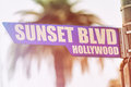 Sunset Blvd Hollywood Street Sign Royalty Free Stock Photo