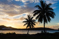 Sunset bora bora island palm trees and cruise ship on the background Royalty Free Stock Image