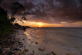 Sunset botany bay sydney summer silver beach australia Stock Image
