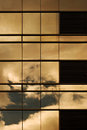 Sunset On A Building Window Wall