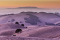 Sunset of California Golden Hills Royalty Free Stock Photo