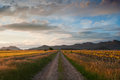 Sunset in cereal fields la rioja spain Stock Image