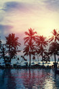 Sunset at a coastline with palm trees Stock Photo