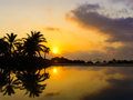Sunset with coconut trees Royalty Free Stock Image