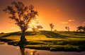 Sunset creek a rural adelaide hills landscape Royalty Free Stock Photography