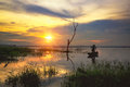 Sunset and dead tree in lake Royalty Free Stock Photo