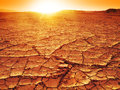 Sunset at a desert golden dry and thirsty soil Royalty Free Stock Photos