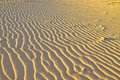 Sunset desert sand waves texture Royalty Free Stock Images