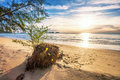 Sunset ebb tropical beach in time on background Stock Photography