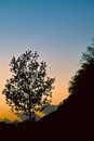 Sunset edge silhouette landscape photo of Royalty Free Stock Photos