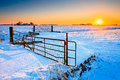 Sunset and fence with grassland in winter Royalty Free Stock Photo
