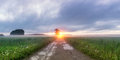 Sunset in the field with fog, Russia, the Urals, Royalty Free Stock Photo