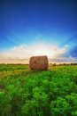 Sunset field tree and hay bale made by hdr this photo Stock Photos